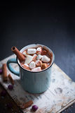 Hete Chocolade met Heemst Stock Afbeeldingen