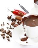 Hete chocolade met kruid stock foto