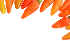 Hete die Spaanse peperpeper op witte achtergrond wordt geïsoleerd Stock Fotografie