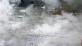 Hete Geothermische Modderpool, Nieuw Zeeland stock footage