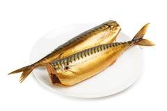 Hete gerookte makreel op plaat Royalty-vrije Stock Fotografie