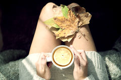 Hete groene thee Stock Foto's