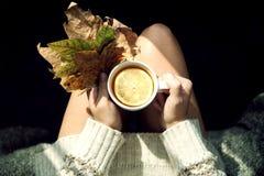 Hete groene thee Royalty-vrije Stock Afbeeldingen