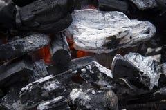 Hete Houtskool Stock Afbeelding
