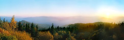 Hete kleuren van het bos in de bergen stock foto's