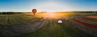 Hete luchtballon die bij zonsopgang opstijgen Royalty-vrije Stock Foto