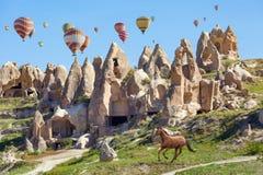 Hete luchtballons en het lopen paard in Cappadocia, Turkije stock fotografie