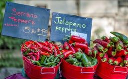 Hete Peper bij Landbouwers` s Markt royalty-vrije stock fotografie