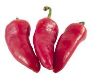 Hete Peppers6 Stock Afbeelding