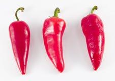 Hete Peppers8 Royalty-vrije Stock Afbeelding