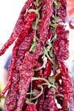 Hete rode Spaanse peperpeper op markt Boven een stapel van droge rode Spaanse peperpeper Stock Afbeeldingen