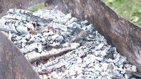 Hete rode steenkolen in de grill stock video