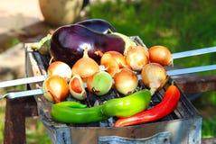 Hete ruwe salade Stock Foto