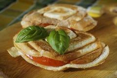 Hete sandwich Royalty-vrije Stock Foto