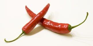 Hete Spaanse peper Stock Afbeeldingen