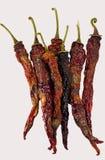 Hete Spaanse peperpeper Royalty-vrije Stock Afbeeldingen