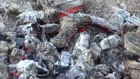 Hete steenkolen stock videobeelden