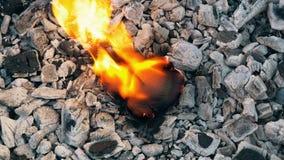 Hete steenkolen en brandend hart stock footage