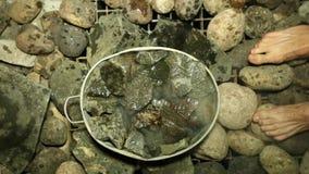 Hete stenen in de sauna en een emmer van de voeten van de mensen van het waterclose-up stock video
