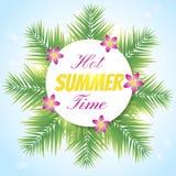 Hete summer1 Stock Afbeelding