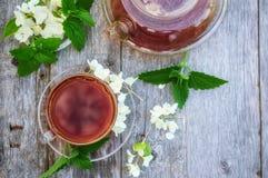 Hete thee met Jasmijn in een glas transparante Kop Sluit omhoog Exemplaarspase Stock Afbeeldingen
