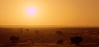 Hete Zon in Marokko dichtbij Erg Chebbi Royalty-vrije Stock Afbeeldingen