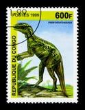Heterodontosaurus förhistorisk djurserie, circa 1999 Royaltyfria Foton