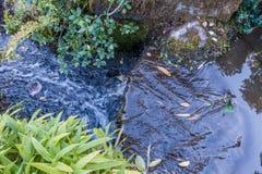 Hetzende Wasser-Nahaufnahme Lizenzfreie Stockbilder
