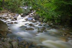 Hetzendes Wasser über Felsen in einem Nebenfluss Lizenzfreie Stockbilder