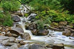 Hetzendes Wasser über Felsen in einem Nebenfluss Stockfotos