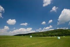 Heu-Ballen-Landschaft Lizenzfreies Stockbild