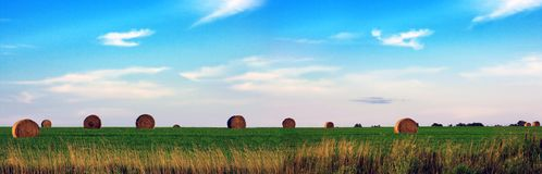 Heu-Feld panoramisch Stockbild
