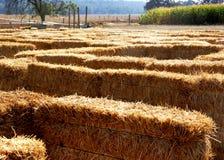 Heu-Labyrinth stockbilder