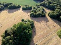 Heu rollt auf Wiese nahe Teich und Waldungen, Vogelperspektive Stockfoto
