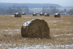 Heu rollt im Schnee auf einem gepflogenen Feld Stockbild