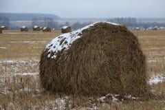 Heu rollt im Schnee auf einem gepflogenen Feld Stockfoto