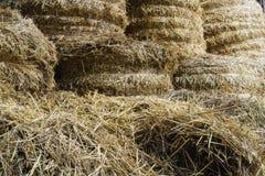 Heu und Stroh verschafft für Vieh Lizenzfreie Stockfotos