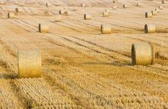 Heuballen auf dem Landwirtschaftsgebiet Lizenzfreies Stockfoto