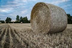 Heuballen auf einem Feld im Sommer Lizenzfreie Stockfotos