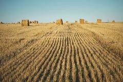 Heuballen auf Feld mit Weizenstroh und -himmel im Ackerland an s Stockbild