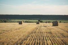 Heuballen auf Feld mit Weizenstroh und -himmel im Ackerland an s Stockfotografie