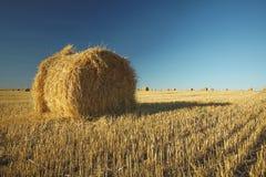 Heuballen auf Feld mit Weizenstroh und -himmel im Ackerland an s Lizenzfreie Stockfotos