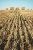 Heuballen auf Feld mit Weizenstroh und -himmel im Ackerland an s Lizenzfreies Stockbild