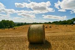 Heuballen auf Feld nach Ernte vor Himmel stockbild