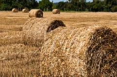 Heuballen auf kürzlich geernteten Feldern Lizenzfreie Stockfotografie