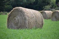 Heuballen auf Landwirt ` s Gebiet stockfotos