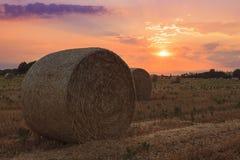 Heuballen bei Sonnenuntergang Stockfotografie