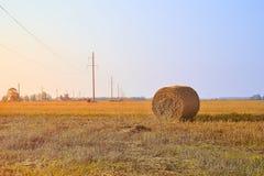Heuballen bei Sonnenuntergang Landwirtschaftsfeld mit blauem Himmel und Stromleitungen Ländliche Natur im Ackerland Stroh auf der Stockbild