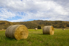 Heuballen in einer grasartigen Koppel, Otago, Neuseeland Lizenzfreie Stockfotos