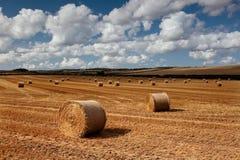 Heuballen, Gerste Regis, Dorset, Großbritannien Lizenzfreie Stockfotos